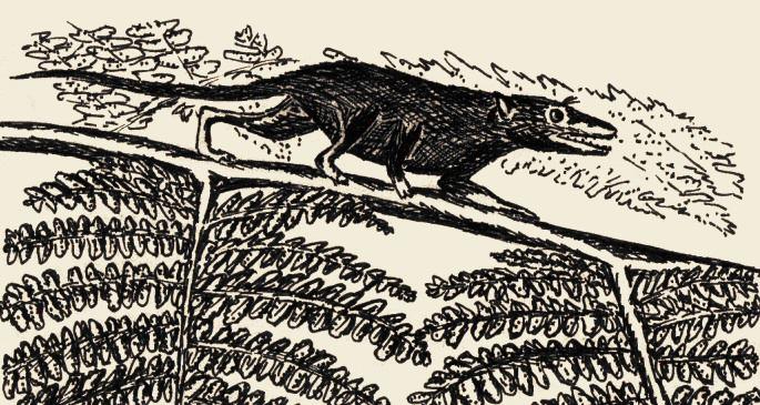 JURASSIC WORLD Morso N lotta DINO rivali Tyrannosaurus T Rex Grande Dinosauro Giocattolo